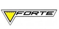 Ремонт стабилизатора Forte