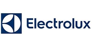 Ремонт утюга Electrolux