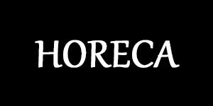 Ремонт индукционной плитки Horeca